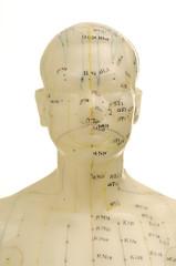 Akupunktur Punkte 1