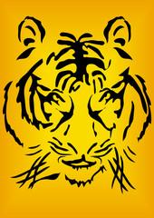 Bengal tiger head over orange background
