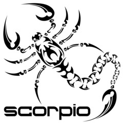 vector illustration scorpio tattoo