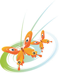 butterflies in a curly green round