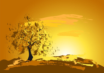 golden sunset with a tree