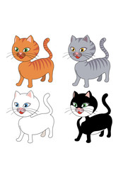 Printed kitchen splashbacks Cats gatto in 4 varianti