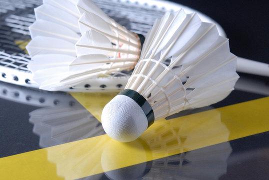 Badmintonbälle mit Schläger