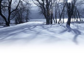 White winter morning in the park