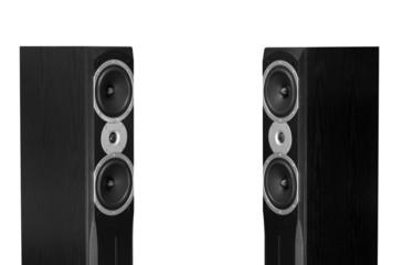 Audiophile speakers