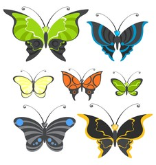 set of images of beautiful butterflies