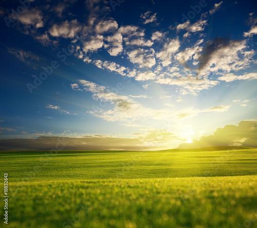 природа облака небо горизонт поле  № 204281 бесплатно