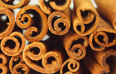 Cinnamon bark abstract background
