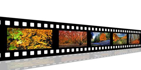 Pellicule d'images d'automne