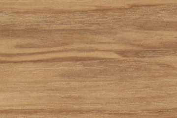 Natural Real Wood Background
