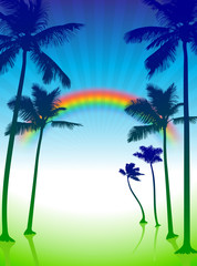 palm trees on green internet background with rainbow