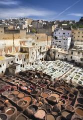 Leder Gerberei in Fes Marokko