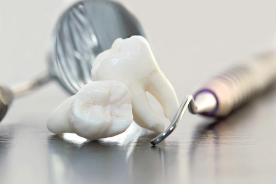 real human wisdom teeth and dental instruments
