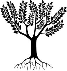 Arbre - Tree ( Silhouette - Dessin - Illustration - Vecteur )