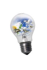 Light bulb with butterflies flying away