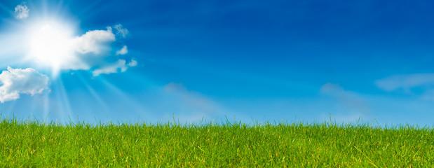 Photo sur Aluminium Bleu jean ciel bleu soleil et herbe verte - paysage vert - prairie