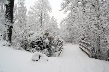 Pont enneigé au bord d'une rivière gelée en Scandinavie