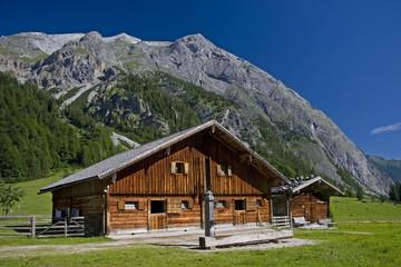 Engalmen in Tirol