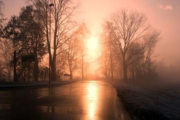 Nebbia a Truccazzano