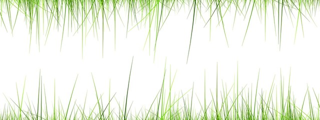high resolution 3d green grass frame isolated on a white
