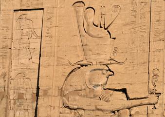 Hieroglyphs at Edfu Temple 5