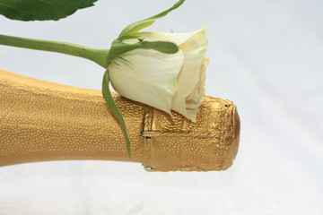 White rose on a champagne bottle