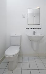 toilet detail