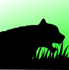 Illustration of a tiger head in green background