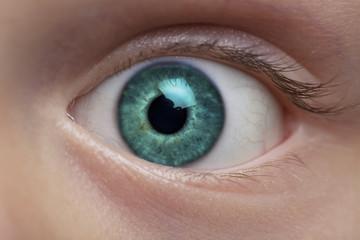 Boy's eye