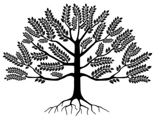 Arbre (Tree Silhouette Symbole Logo Dessin Illustration Vecteur)
