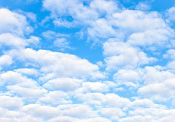 Bright Blue Sunny Sky