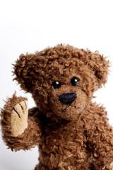 Beautiful toy , bear Teddy.