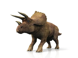 Le Triceratops