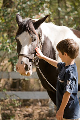 Little Boy Happy to be Petting a Horse
