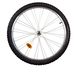 Front wheel of a mountain bike isolated on white