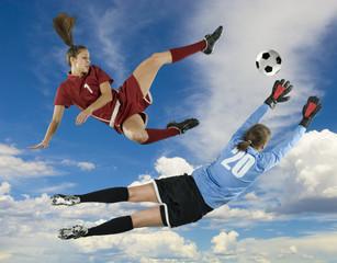 Soccer Kicker and Goalie
