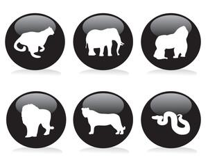 Wild animal button set