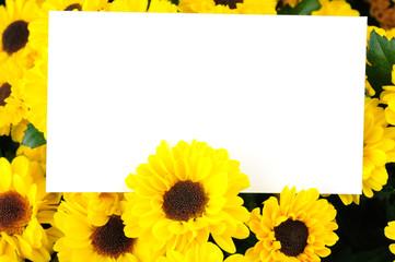 Chrysanthemum and a card