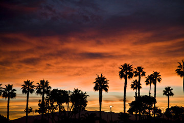 Sunrise in  Coronado