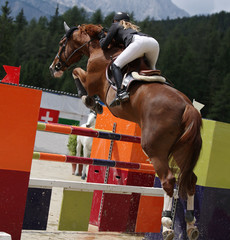 Beautiful lady jumping with her stud horse during a show jumping