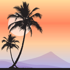 tropical sunset landscape with palms and volcano