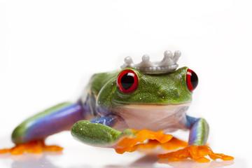 Frog Prince Walking