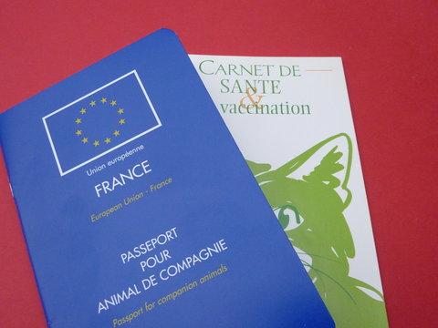 carnet de santé et passeport