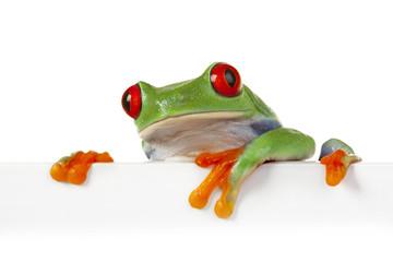 Crazy Frog!