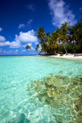 Foto op Aluminium Onder water Tropical turquoise water!