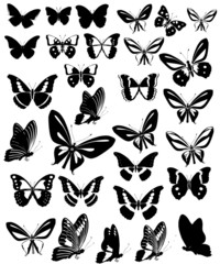 Butterflies Party