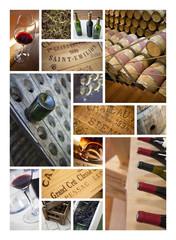 Vin, cave et vinification