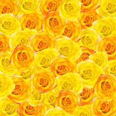 Beautiful background from yellow and orange roses