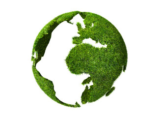 globe grass