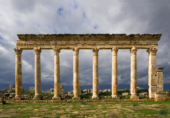 Columns of Apamea Syria